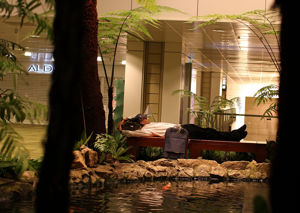 Sleeping at the koi pond in Changi Airport