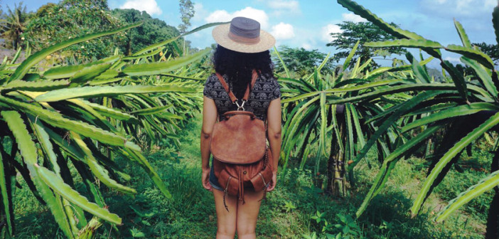 Arriving in Ubud, Bali: My Favorite Balinese Town