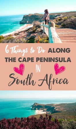 6 Things to do Along the Cape Peninsula in South Africa