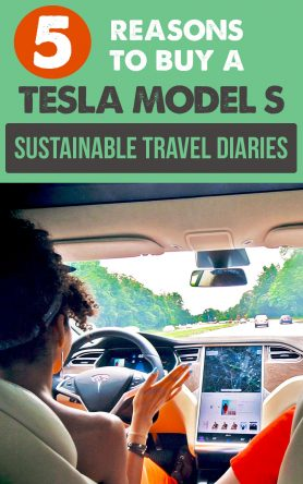 5 Cool Tesla Features That Convinced me to Buy a Tesla Model S