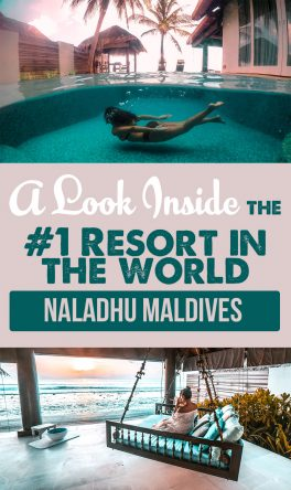 Here's What the #1 Resort in the World Looks Like