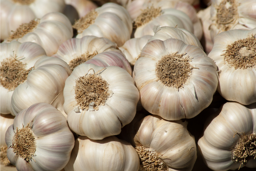 GARLIC: Anti-viral Foods That Boost Your Immune System