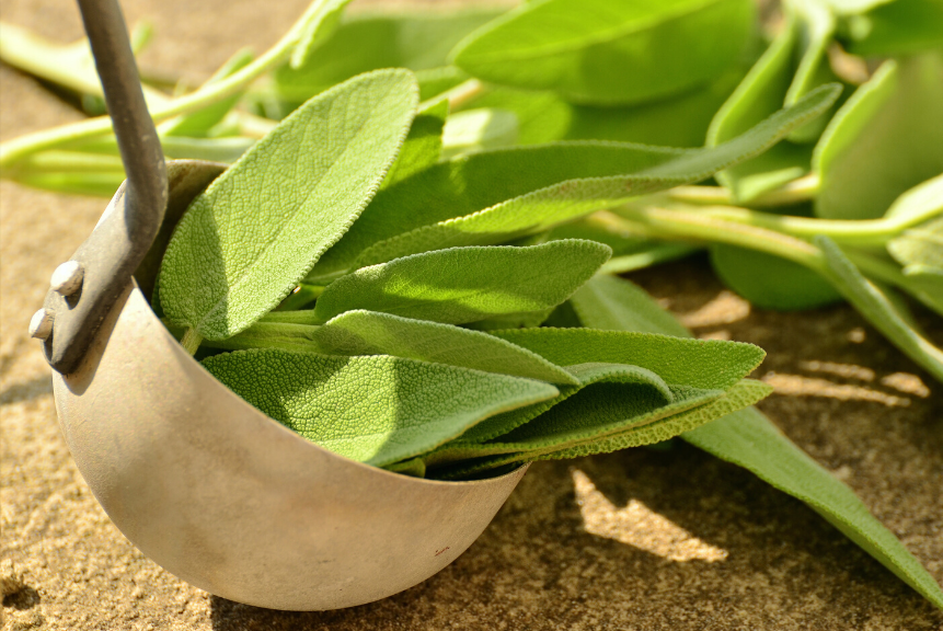 Sage: Anti-viral Foods That Boost Your Immune System